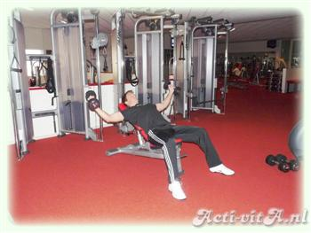 Dumbbell Incline Flyes